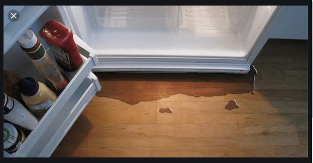 Refrigerator Maintenance Service